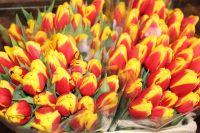 Skaityti daugiau: Malonus dėmesys kovo 8-osios proga